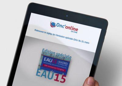 Ejournal EAU 2015
